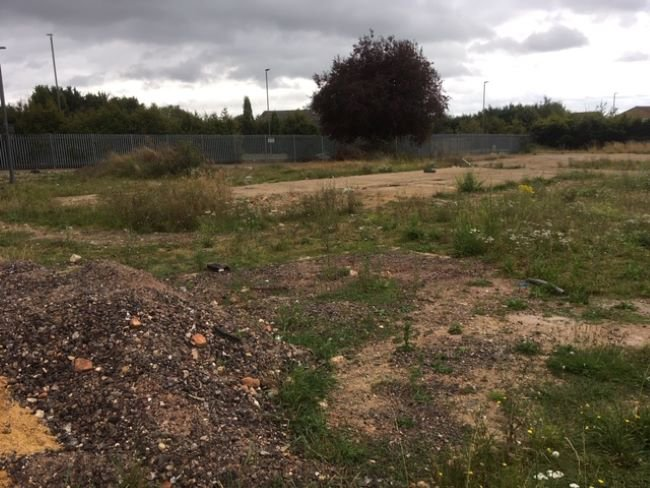 Photo of the current Orchard House site