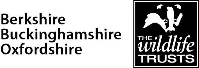 Berkshire Buckinghamshire Oxfordshire Wildlife Trusts Logo